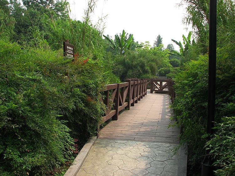 游成都浣花溪公园&四川省博物馆